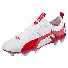 Zapatos De Futbol Puma Profesionales