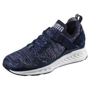 Men's IGNITE evoKNIT Lo Training Shoes