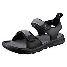 Wild Sandals