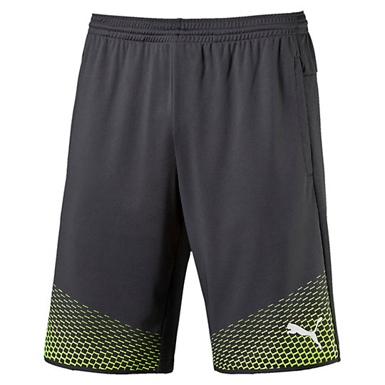 Puma ����� IT evoTRG Shorts Touch 654908_52