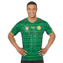 Cameroon Home Shirt Replica