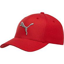 Nine Lives Fitted Hat