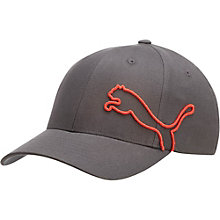 Curve Brim Embroidery Cat Fitted Hat